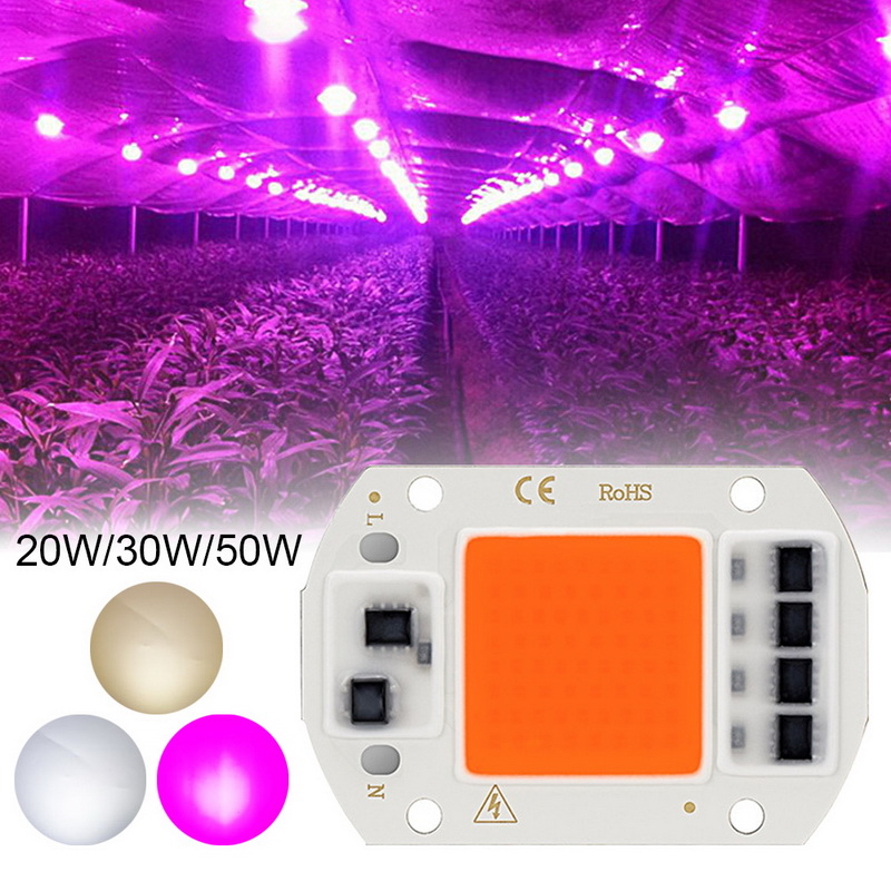 LED Grow COB Chip Phyto Lamp Full Spectrum AC220V 10W 20W 30W 50W For Indoor Plant Seedling Grow And Flower Growth Fitolamp New