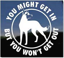 Je Zou Kunnen Krijgen In Waarschuwing Belgische Malinois Vinyl Decal Auto Stickers Voor Auto-Venster Bumper Deur Hood Muur Huisdier hond Decor
