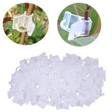 100 sztuk Mini przezroczyste rośliny kwiatowe klipsy do szczepienia narzędzia ogrodnicze dla 2-4 5mm nasiona ogrodnictwo ozdoby narzędzia # R20 tanie tanio Z tworzywa sztucznego