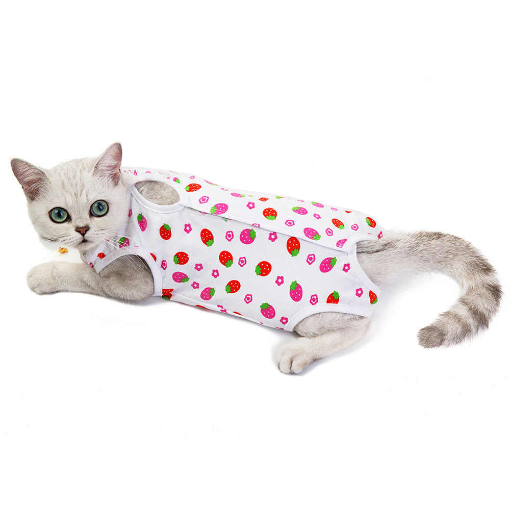 Gato do animal de estimação algodão recuperação terno e collar alternativa após a cirurgia usar anti lambendo feridas bonito impresso filhote de cachorro roupas do cão vestuário