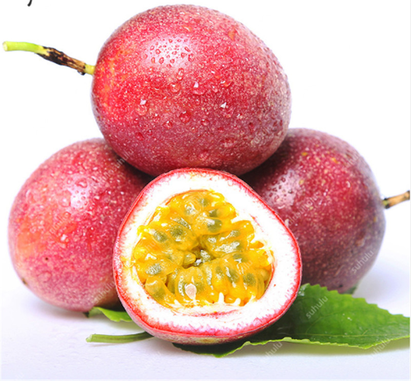 200 Pcs Passiflora Mollissima Banana Passion Fruit Bonsai Delicious Fruit Bonsai Rare Exotic Tropical Fruit DIY Home Garden
