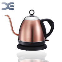 220V Gooseneck Electric Kettle BPA Free Boil Dry Protection Strix Thermostat 1000W Electric Teapot Quick Heating Coffee Pot