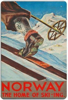 Norway The of Skiiing Retro Metal Tin Sign Plaque Poster Wall Decor Art Shabby Chic Gift image