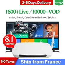IPTV Subscription France Arabic Android 8.1 QHDTV Box Leadcool Q9 1+8G 2.4GHz WIFI Netherlands Belgium French