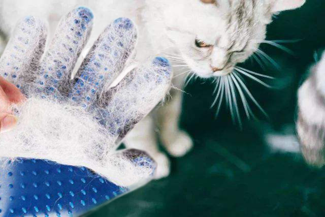Cat Grooming Cleaning Brush Wool Gloves Cat Grooming Gloves Cat Hair Removal Gloves Dog Cleaning Pet Comfort Brush