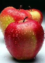 Алмазная вышивка с тремя маленькими красными яблоками 5d diy