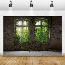 خلفيات Laeacco القديمة رث جدار نافذة مشهد الأخضر الكرمة التصوير خلفيات الطفل صورة backغرفة الخلفيات لاستوديو الصور