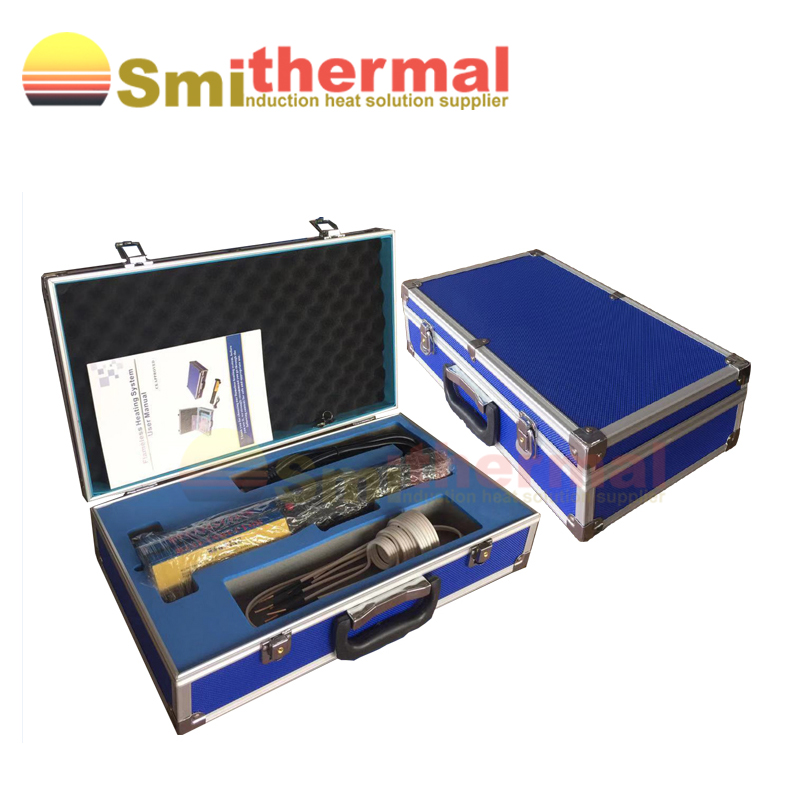 220V 1000W Handheld High Frequency Flameless With Coil Kits Mini Induction Heater Induction Heating Equipment