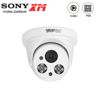 Two Array Infrared Leds Plastic 5MP/4MP/2MP H.265+ 25fps Indoor Audio POE IP Security Dome CCTV Camera