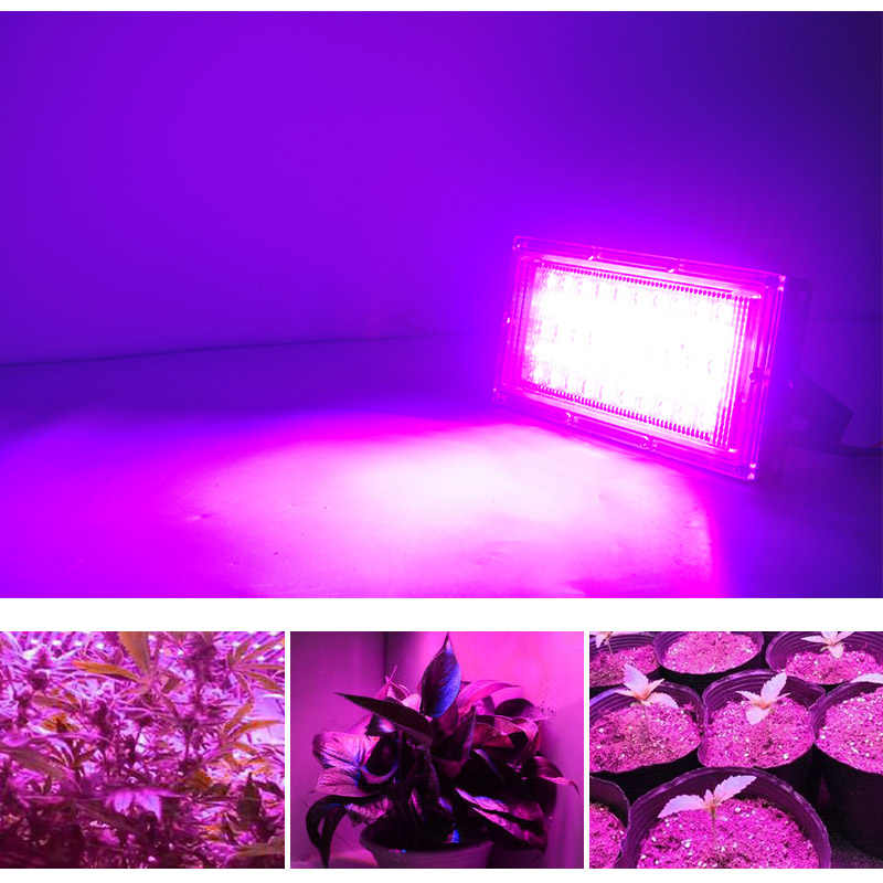 Led Schijnwerper Plantengroei Bloem 50W Led Fabriek Led Lamp Ac 220V Plant Spot Groene Huis Plant hydrocultuur Groei Licht