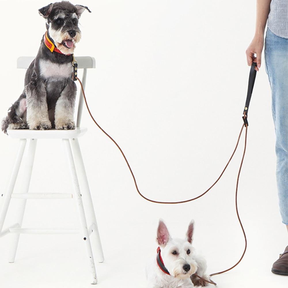 Laisse de chien faite main en cuir plomb de marche corde de Traction Portable tannage végétal pour petits chiens laisse corde de Traction