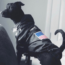高級冬小型犬服大型犬フレンチブルドッグ服服犬のコート犬の顔ジャケットチワワ