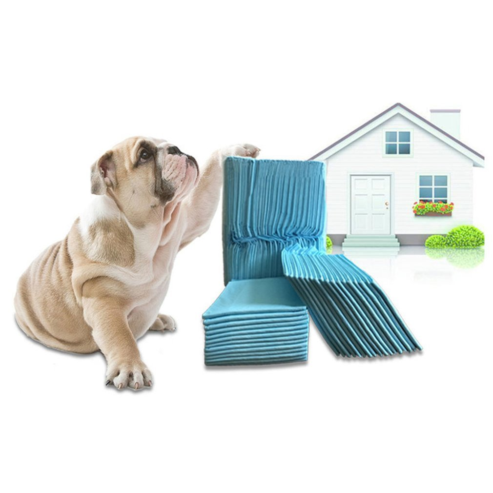 Dog And Puppy Training Mats Pet Diapers Dog Diapers Deodorant Absorbent Diapers Disposable Diapers Cats And Dogs Supplies
