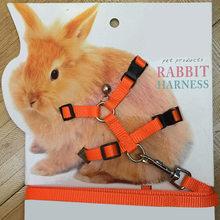 Coleira para coelho de animais, corda de tração ajustável para caminhada em corrida