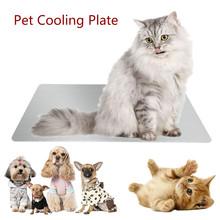 Premium Pet płyta chłodząca 1 szt Trwałe użytkowanie małych zwierząt królik chomik fajna płyta pomóż zwierzętom ochłodzić świnki morskie artykuły dla zwierząt tanie tanio Pranie ręczne Chłodzenia Stałe CP189559 Łóżko maty Other 10x6cm(hamster) 12x8cm(rabbit) 30x20cm(cat puppy)