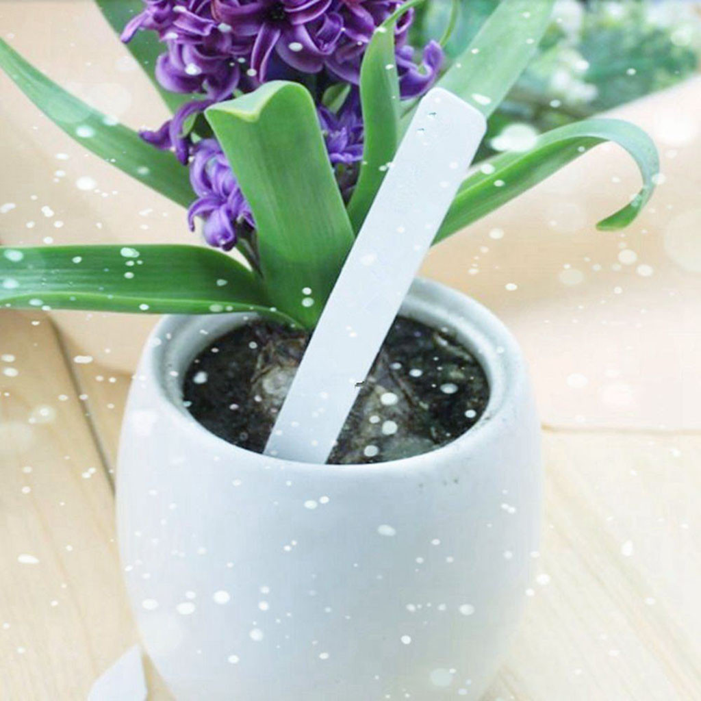 Blanco 100 Uds etiquetas colgantes de semillas de plantas de pl/ástico marcadores de plantas de jard/ín de guarder/ía decoraci/ón reutilizable etiquetas de estaca para macetas etiquetas de plantas