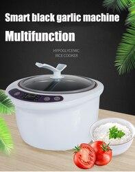 6L Large Capacity Black Garlic Fermenter Home Smart Auto Fermentation Box Machine Intelligent Control Natto Wine Yogurt Maker