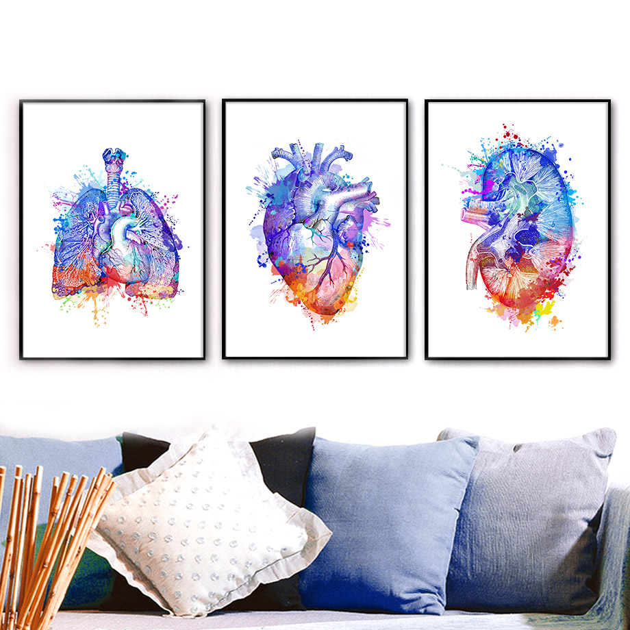 Colorful Anatomy Brain Heart kidney Breast Wall Art Canvas Painting Nordic Posters And Prints Wall Pictures Doctors Office Decor