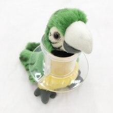 Pássaro acrílico tubo colar para papagaio grave pena arrancar neckband restringe pescoço movimento 3 pçs/set