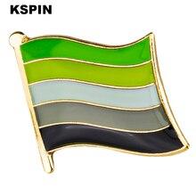 Aromantic Pride Flag Metal Badge Lapel Pins Brooch Jewelry Rozet in Badges Pin
