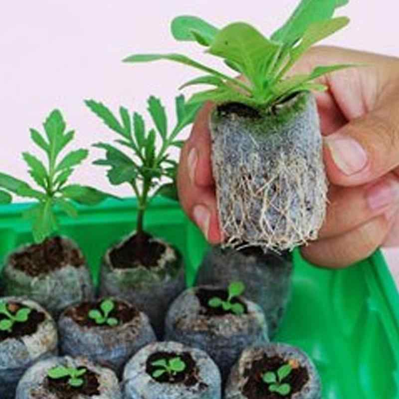 1Pc Seedlings Nutrient Block Compression Compressed Peat Blocks Magic Soil Easy to Pack and Use for Garden Planting Seedling