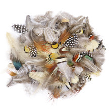 50Pcs/Pack Mixing Natural Pheasant Feathers for Crafts DIY Jewelry Making Accessories Small Chicken Plumes Decoration Wholesale