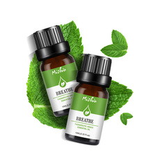 Mint Eucalyptus Lemon Plant Essential Oil Refreshing Promote