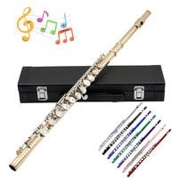Professional Flutes Musical Instruments Chinese Dizi Transversal Flauta 16 Hole C Key Tone Piccolo Ottavino Flute Brass Flute