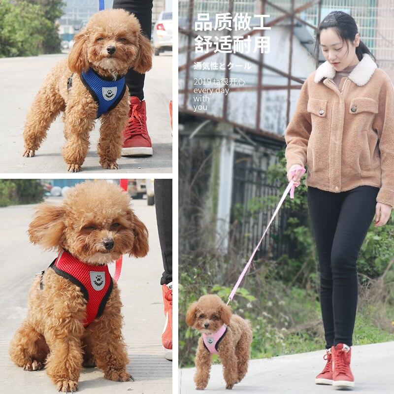 Dog Hand Holding Rope Summer Small Dogs Dog Teddy Corgi VIP Cute Puppy Medium-sized Dog Adjustable Size