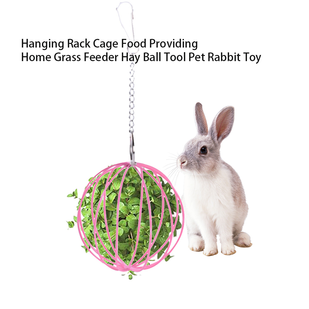 Hay Ball Plating Tool Hamster Hanging Toy Decorative Food Providing Cage Rack Home Pet Rabbit Grass Feeder Exercise