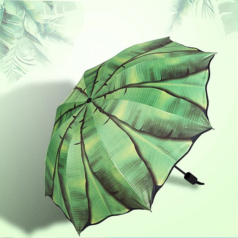 Musa Basjoo Umbrella Dual Purpose Vinyl Folding Sun-resistant College Style Parasol Customizable Hipster Plant Foreign Trade