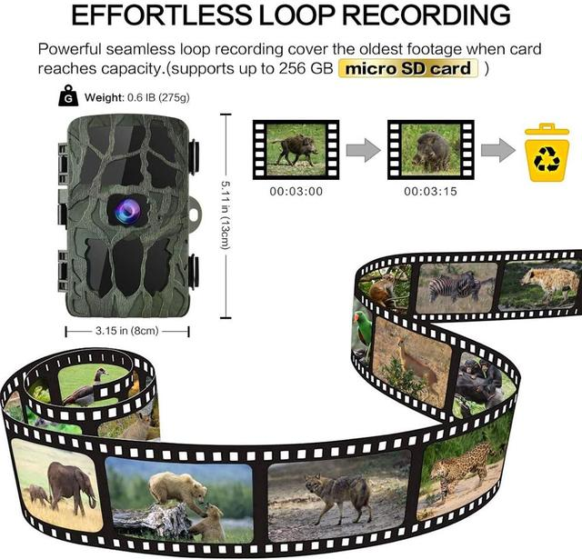 4K Hunting Camera Trap 20MP Infrared Hunt Night Vision Support 256GB Wildlife Photo-trap Hunting Trail Photo Camera Foto Chasse 2