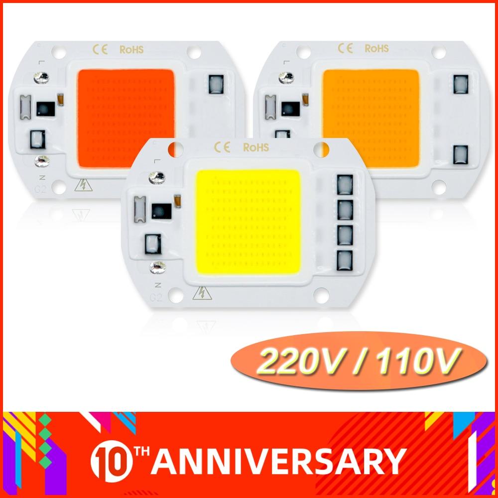 110V 220V COB LED Lamp 10W 20W 30W 50W Lampada LED Bulb IP65 High Power Smart IC DIY Flood Light Spotlight Outdoor Chip Lamp