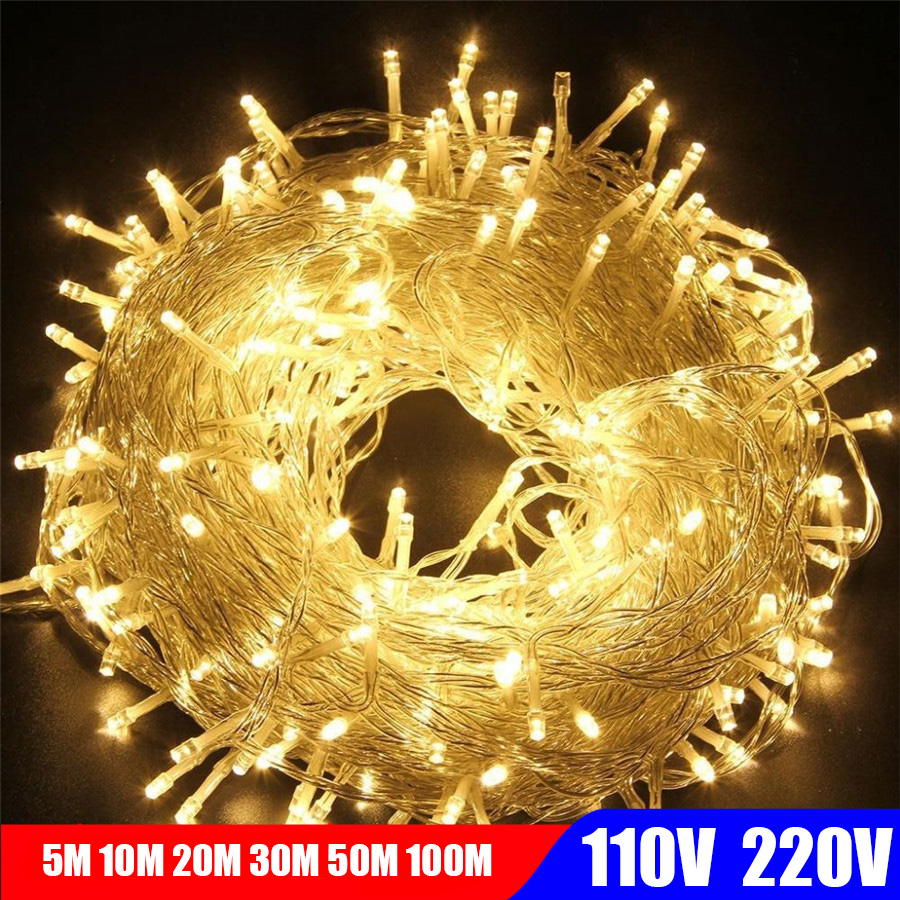 5M 10M 20M 100M LED String Fairy Light Holiday Decoration AC220V 110V Garland Christmas Lights Outdoor Light Controller гирлянда