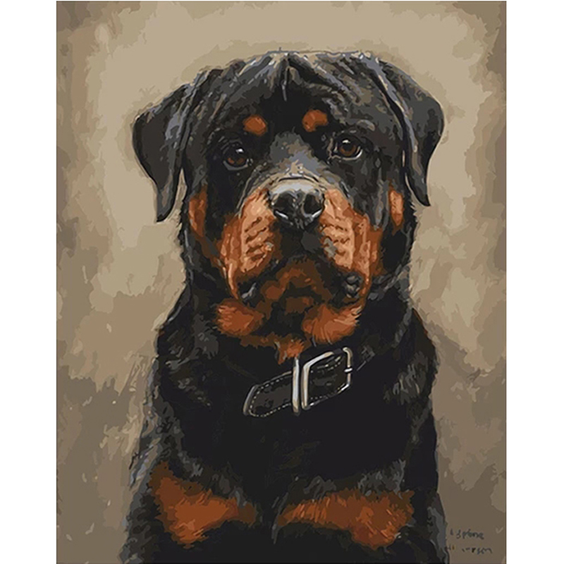 Dog Digital Oil Paintings,Picture By Numbers,Painting By Numbers For Adult Paint By Number,Draw On Canvas For Home Decor Artwork