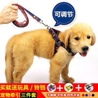 Dog Chain Dog Hand Holding Rope Harness Dog Lanyard Sub Dog Leash Teddy Golden Retriever Medium And Small Dogs Pet Supplies