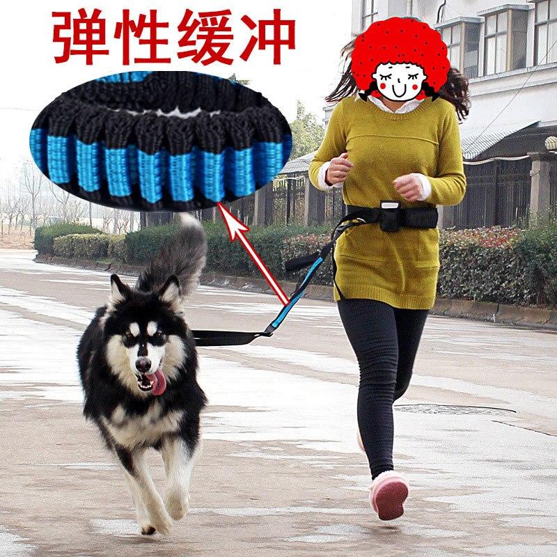 Waist Dog Running Hand Holding Rope Running For Buffer Sling Dog Hand Holding Rope Medium Large Dog Outdoor Sports