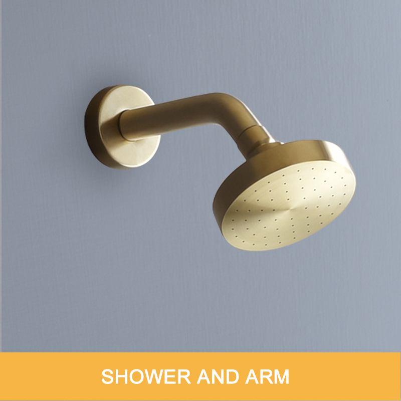 Top shower and arm