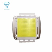 EPISTAR CHIP 150W 200W Watt LED CHIP High Power LED SMD COB Bulb Chip Cold Warm White Led bulb Diode Lamp For DIY 30000LM