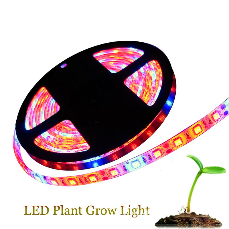 DC12V 5M 60LEDs Led Grow Light Growing LED Strip Plant Growth Light Set Greenhouse Grow DIY For Growth Lamp Seedlings Plants LED