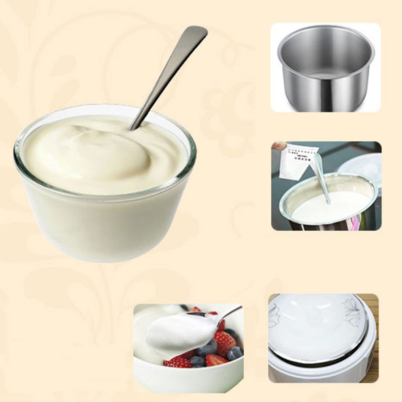 Yogurt Yeast Starter Natural 5 Types of Probiotics Home Made Lactobacillus Fermentation Powder Maker Homemade Kitchen