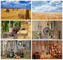 Yeele 写真撮影用の風景フィールド,写真の背景,写真スタジオ,秋の風景