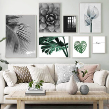 Black White Plant Aloe Monstera Leaf Wall Art Canvas Painting Nordic Posters And Prints Pictures For Living Room Decor