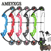 Arrow Compound Bow Profession Archery Shooting-Training-Gift Getting Lbs And for Beginner
