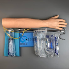A infusão venosa da punção e o braço intramuscular do treinamento da injeção modelo do braço da prática do desenho do sangue da enfermeira