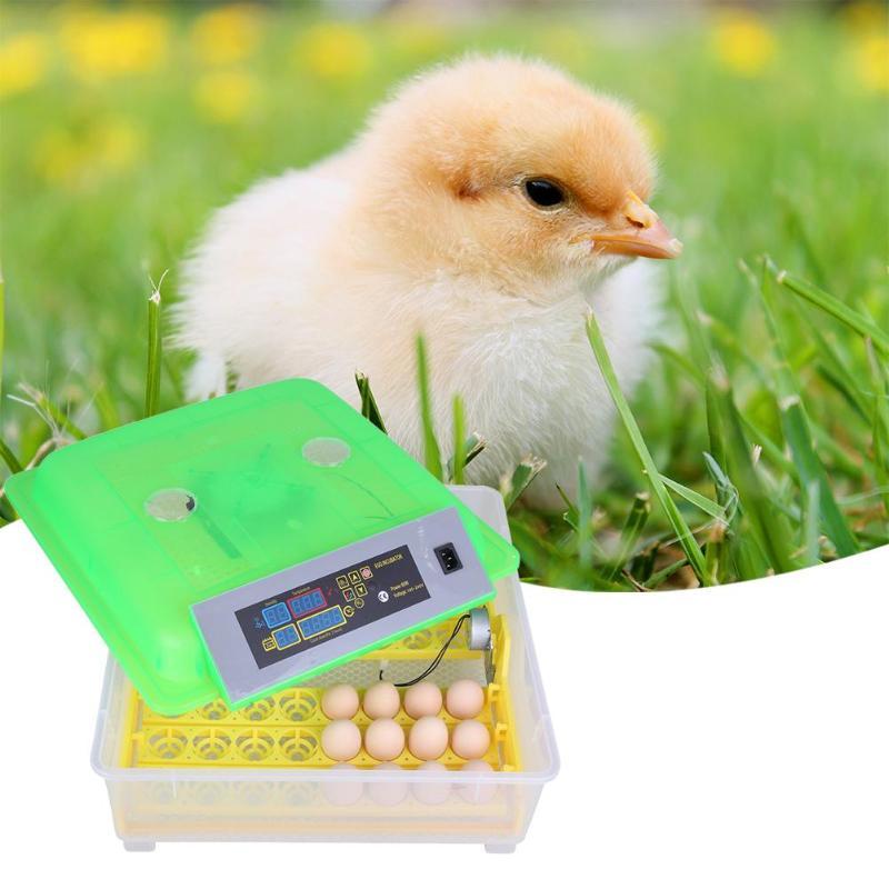 Лучшая сельскохозяйственная инкубаторная машина 12/48 инкубаторы для яиц куриный автоматический инкубатор для яиц Китай для продажи перепелиных питомников
