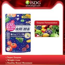 Isdg noite enzima emagrecimento perda de peso produtos queima de gordura melhor digestão suplemento suprimir appetite.120 contagens