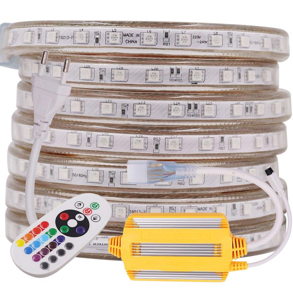 2020 NEW RGB LED Strip Light 5050 220V 230V 240V AC 60LEDs/m Remote Control Rope Lights Waterproof Flex Tape Outdoor Decoration