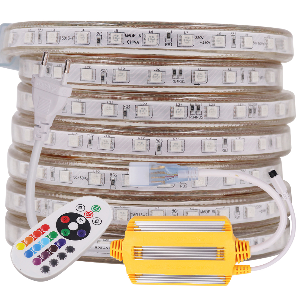 2020 NEW RGB LED Strip Light 5050 220V 230V 240V AC 60LEDs/m Remote Control Rope Lights Waterproof Flex Tape Outdoor Decoration