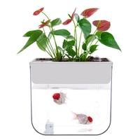 Novice Ultra Clear Plastic Fish Tank Aquaponic Betta Fish Bowls Desktop Ecological Aquarium for Indoor Decoration